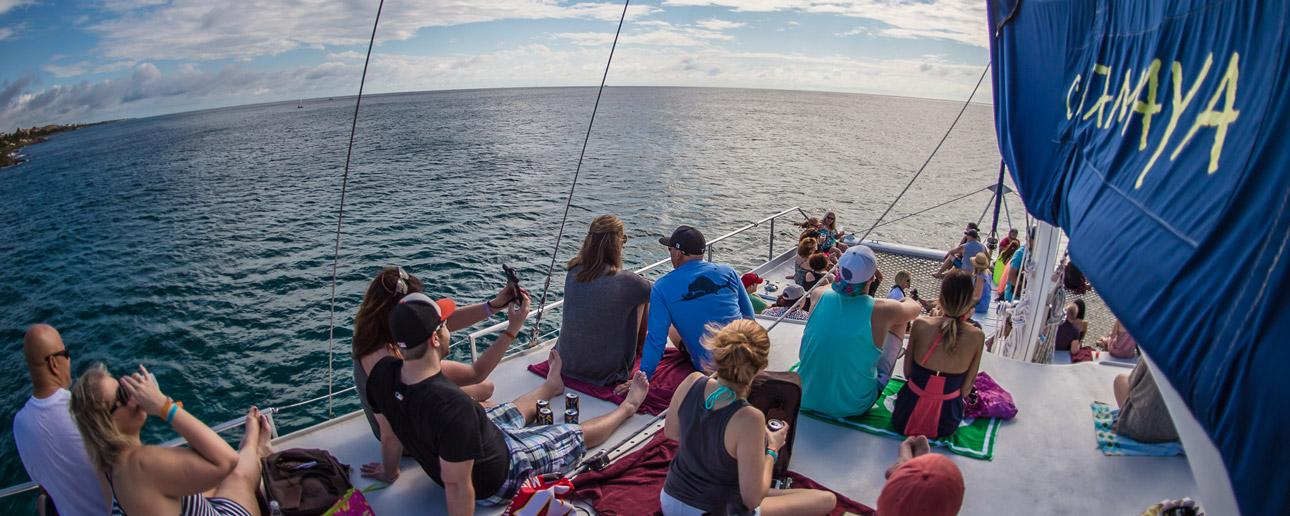 Luxury Catamaran & Snorkeling Adventure on the Caribbean Sea