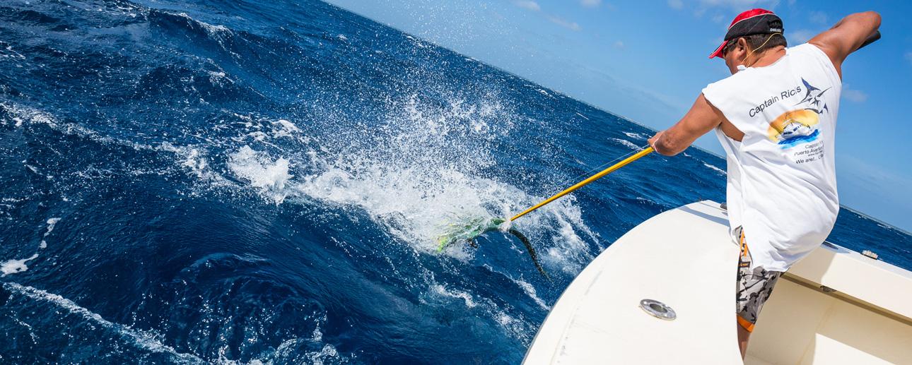 Deep sea fishing in Caribbean Sea Adventure